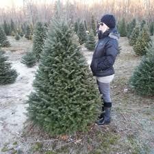 lockwood christmas tree farm christmas trees 129 austin ave