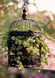 Birdcage Decor For Sale Repurposing Decorative Bird Cages