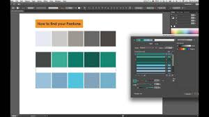 Pantone Colors by How To Find Pantone In Illustrator Cs6 Youtube