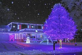 purple christmas lights guide to naperville christmas lights and house displays