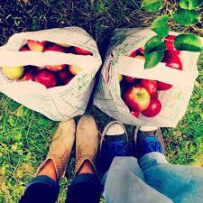 best 25 fall dates ideas on date ideas autumn