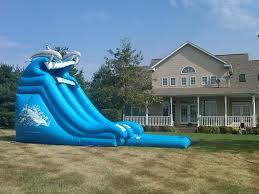 dolphin wave slide inflatable fun