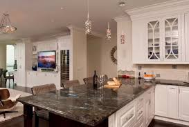Thermoplastic Panels Kitchen Backsplash Granite Countertop Craftsman Kitchen Cabinets Dishwash Powder