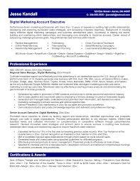 marketing resume summary of qualifications exle for resume resume marketing executive summary awesome digital marketing