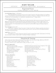 practitioner resume template resume practitioner resume exles