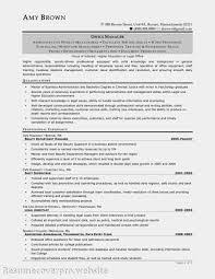 Criminal Defense Attorney Resume Sample by Criminal Defense Attorney Resume Sales Attorney Lewesmr
