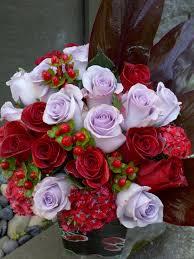 2 dozen roses two dozen roses juniper flowers