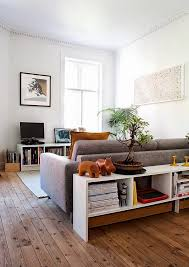 hackers help suggest a behind sofa room divider and bookcase