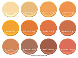 Apricot Color Best 25 Orange Bathroom Paint Ideas On Pinterest Diy Orange
