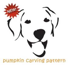best 25 pumpkin carving patterns ideas on pinterest pumpkin