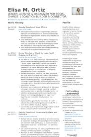 Senior Management Resume Examples director of client services resume samples visualcv resume