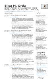 Criminal Justice Resume Sample by Senior Director Resume Samples Visualcv Resume Samples Database