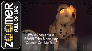 zoomer shadow zoomer 2 0 secret trick