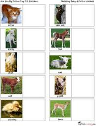 printable animal activities free mother baby animals matching activity baby animals free