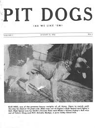 american pit bull terrier website official pit bull site of diane jessup