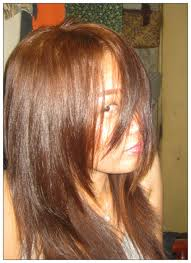light golden brown hair color chart prettythrifty bremod hair color result