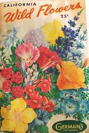 wildflower seed packets 227 best vintage flower seeds images on vintage seed