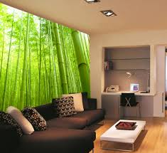 wall murals and whole wall decals bamboo forest