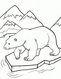 93 download polar bear coloring polar bear friends