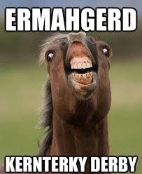 Meme Horse - funny horse memes 13 pics vitamin ha vitamin ha horses