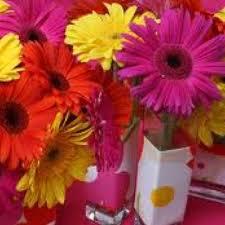 Daisy Centerpiece Ideas by 36 Best Court Images On Pinterest Gerber Daisies Bridal Shower