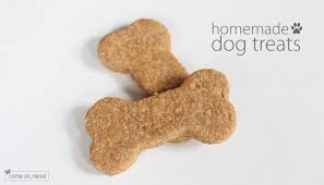 recipe for dog treats dog treats recipe