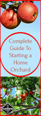 37 best growing a home orchard images on pinterest fruit garden