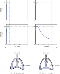 Types Of Ventilators Selecting The Ventilator And The Mode Thoracic Key