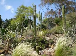 Quail Botanical Gardens Free Tuesday San Diego Places Worth Visiting Hubpages