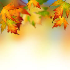 thanksgiving banners for facebook 5 fabulous fall patterns for your twitter header image the