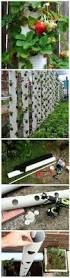 Diy Strawberry Planter by How To Make A Vertical Strawberry Tube Planter Yard Garden