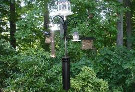 Patio Bird Feeder Stand How To Make A Squirrel And Raccoon Bird Feeder Baffle Today U0027s