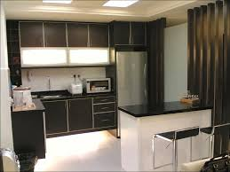 Pull Out Kitchen Cabinet Shelves Kitchen Cabinet With Shelves And Doors Organize Kitchen Cabinets