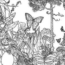 autumn leaf image coloring page download u0026 print online coloring