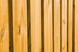 cedar fence board spacing 28 images cedar spaced board fence