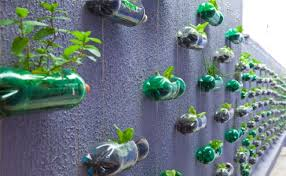 no space don u0027t worry grow your plants in hanging bottle wall