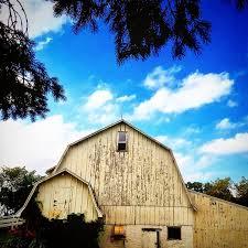 Oaks Farm Barn Wedding Prices Golden Oak Farm And Vineyard Venue Webster Mn Weddingwire