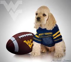West Virginia how to travel with a dog images 99 best wvu mountaineers logo images country roads jpg