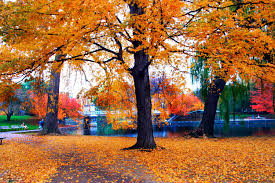 Autumn Colors Fall Foliage Spectacular