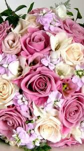 100 Flower Shops In Santa 42 Best Real Local Florists Images On Pinterest Florists Flower