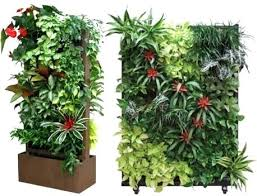 living wall indoor plants living wall living wall planters superb
