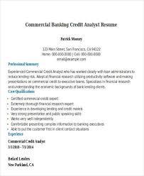 Analyst Resume Sample It Analyst Resume Lukex Co
