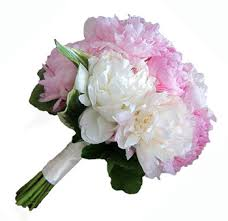 wedding flowers delivery peonies wedding flowers buy wholesale peonies in bulk pink