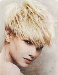 short pixie haircut styles for overweight women 105 best hair styles images on pinterest hair cut short bobs