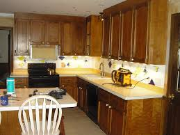 Diy Paint Kitchen Cabinets White Painting Kitchen Cabinets White Before And After Pictures U2013 Home