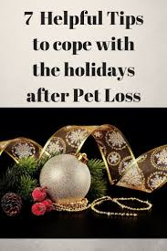 47 best december holidays cats images on
