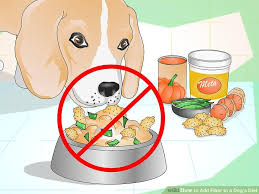 veterinarian approved advice on how to add fiber to a dog u0027s diet