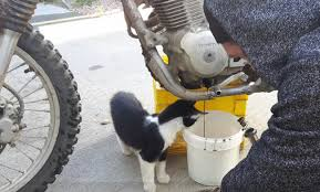 how to change oil on dirtbike crf 150f youtube