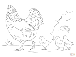 hen and cute coloring page free printable coloring pages