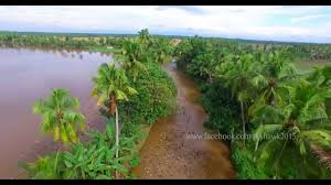 Photography And Videography Aerial Photography And Videography In 4k Of Kumarakom Kerala